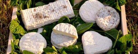Plateau fromage de pays